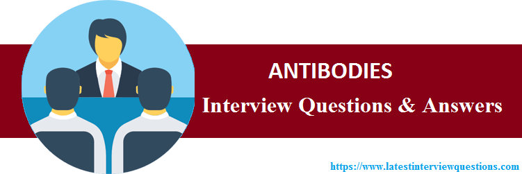 Interview Questions on ANTIBODIES
