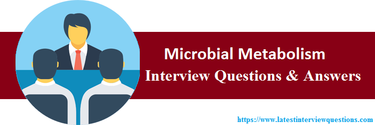 Interview Questions On Microbial Metabolism