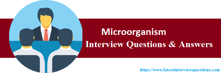 Interview Questions On Microorganism
