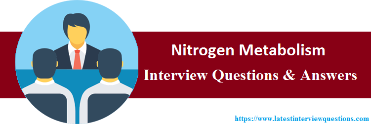 Interview Questions On Nitrogen Metabolism
