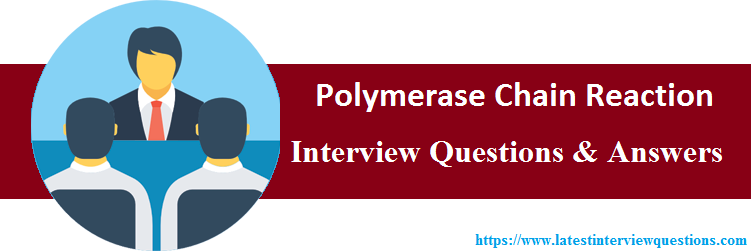 Interview Questions On Polymerase Chain Reaction