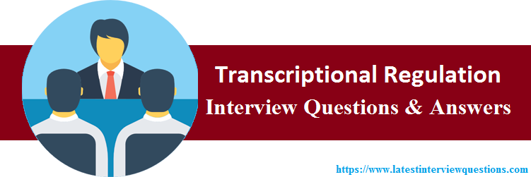 Interview Questions On Transcriptional Regulation